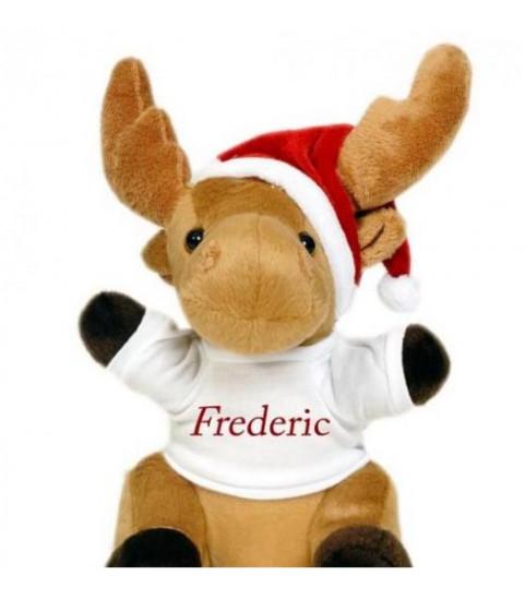 Cadeau personnalisé pour enfant, tee shirt peluche renne avec photo