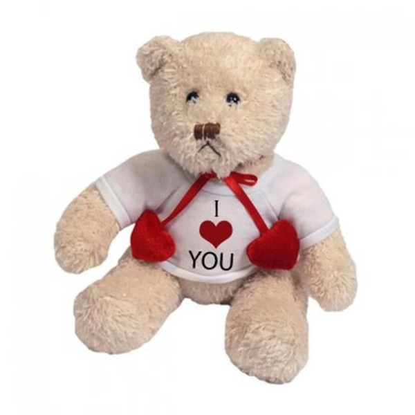 Peluche ours blanc photo