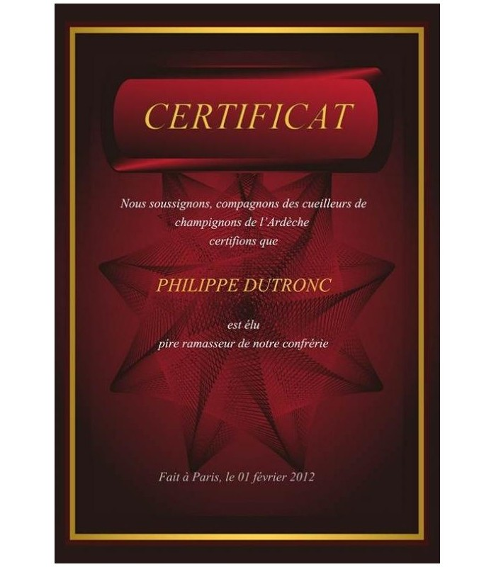 diplome personnalise modele4