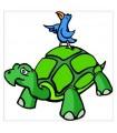 sticker tortue et oiseau