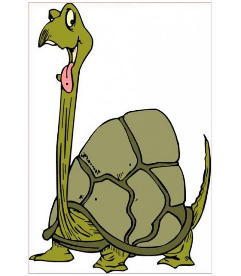 sticker tortue diplodocus