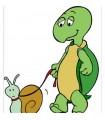 Sticker tortue et escargot