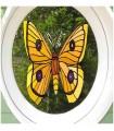 sticker papillon de nuit
