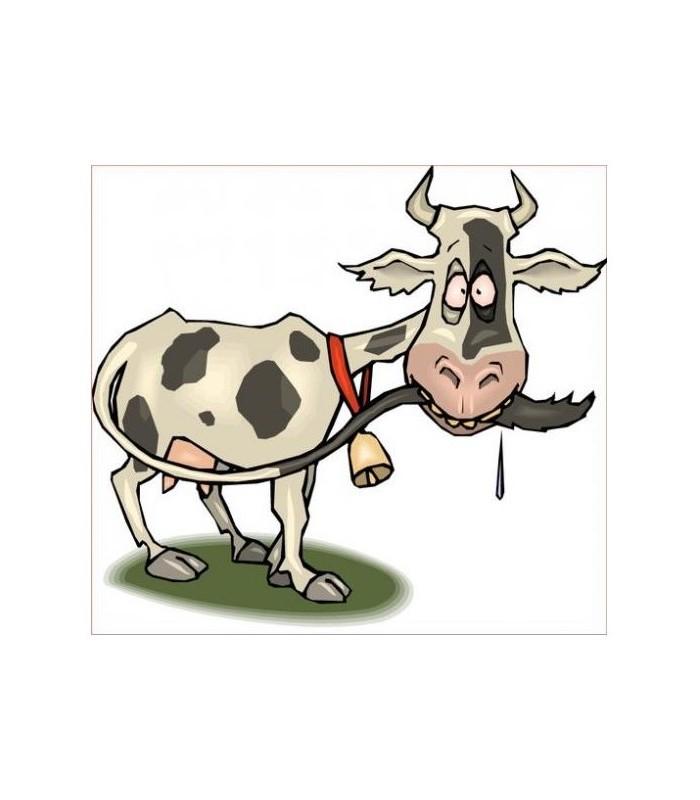 Sticker vache barjot
