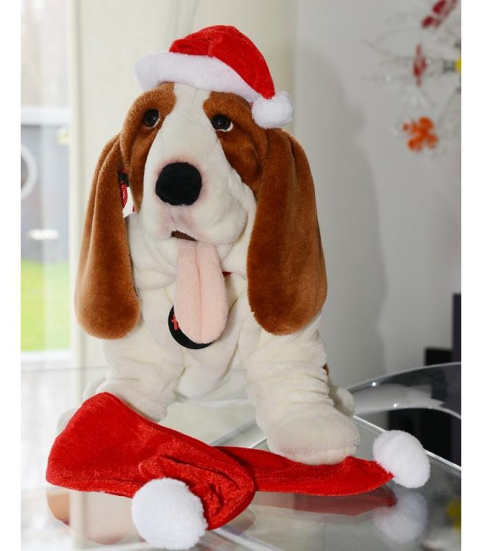 Echarpe et bonnet pere noel chien