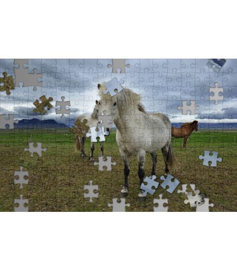 Puzzle photo cheval