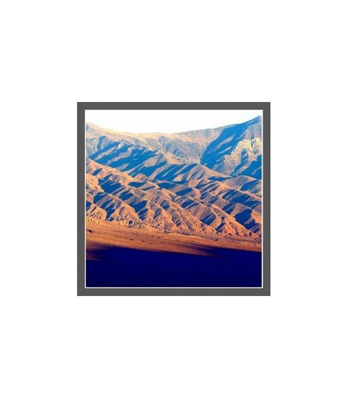Photo desert 2