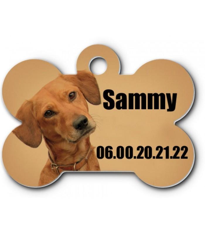 Medaille chien personnalisée photo