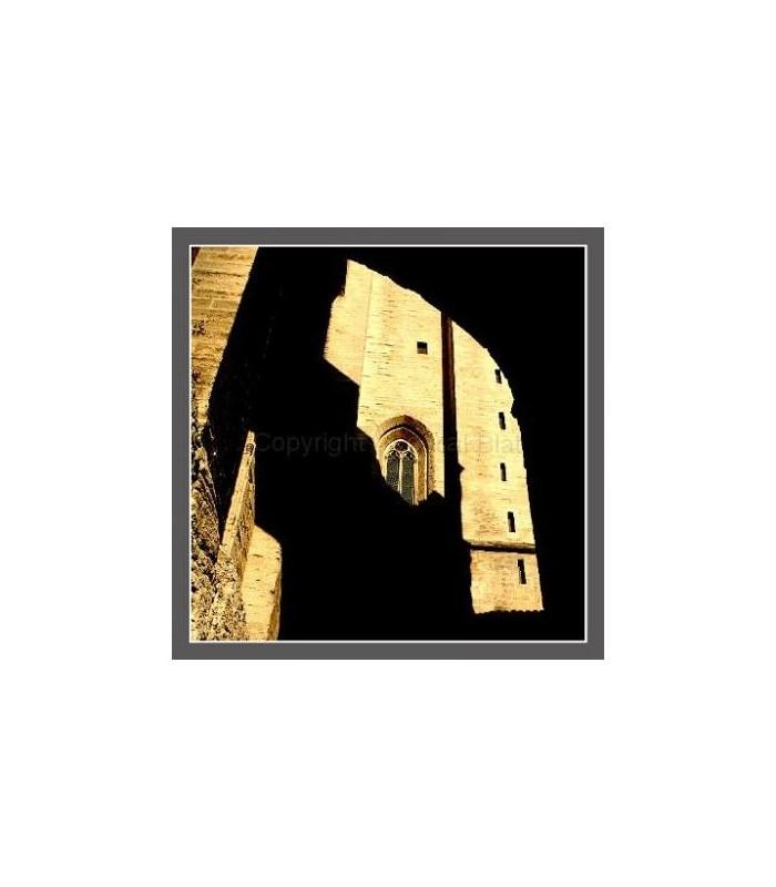 Photo du palais des papes Avignon