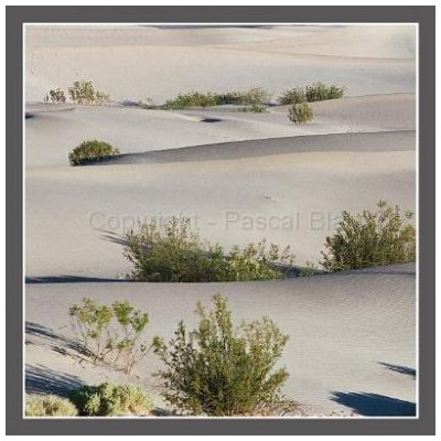 Photo deco les dunes
