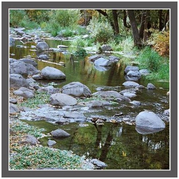Photo riviere