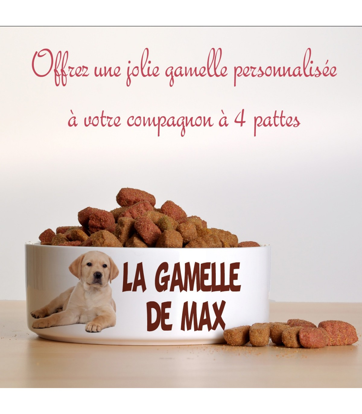 Gamelle Pour Chien Hauteur une gamelle personnalisée pour votre animal de compagnie, ch