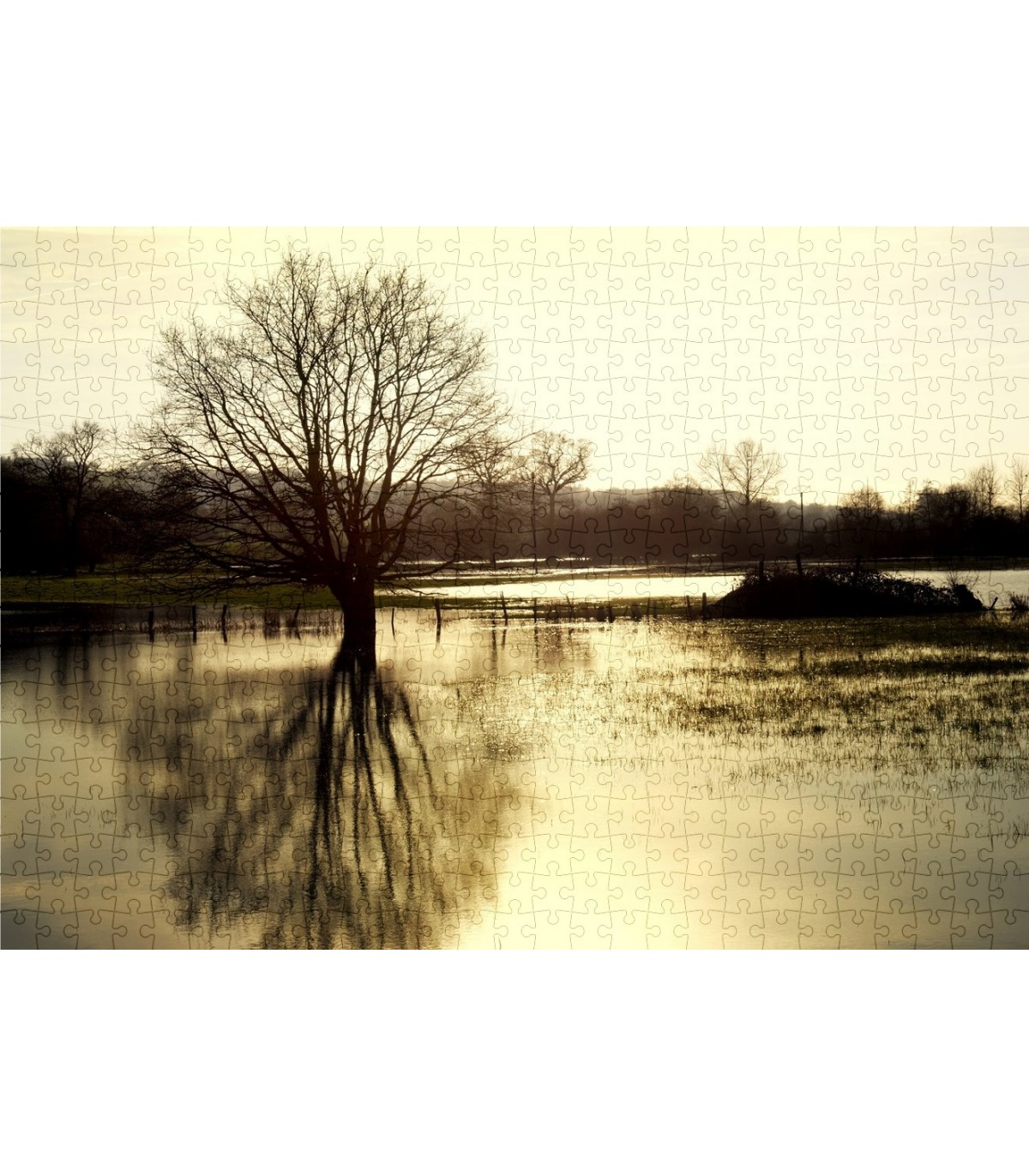 Puzzle paysage campagne