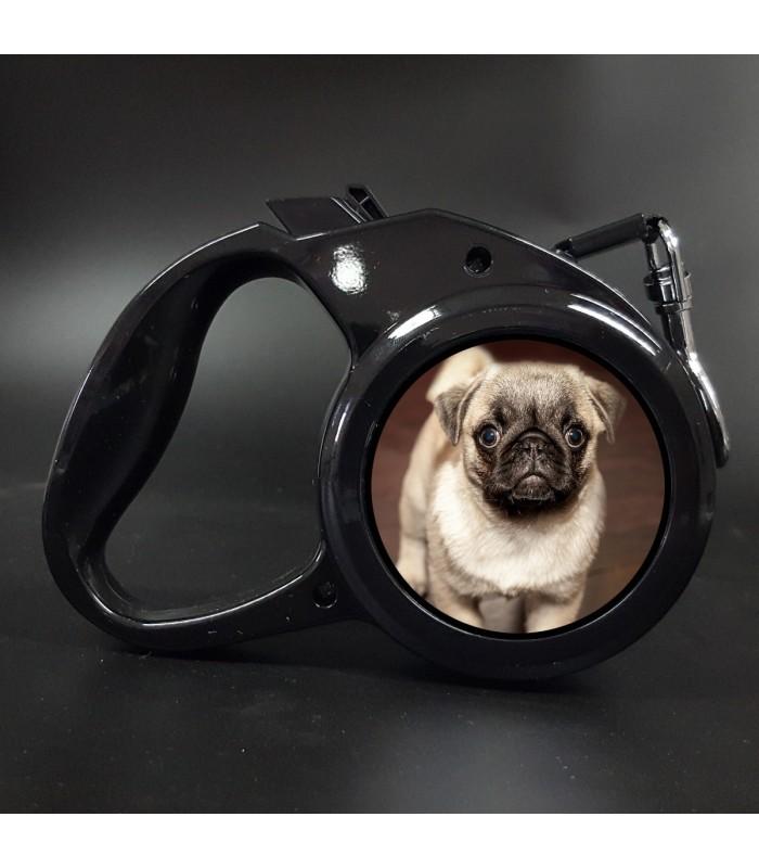 Laisse chien personnalisee