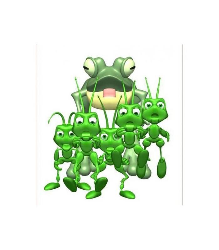sticker sauterelles