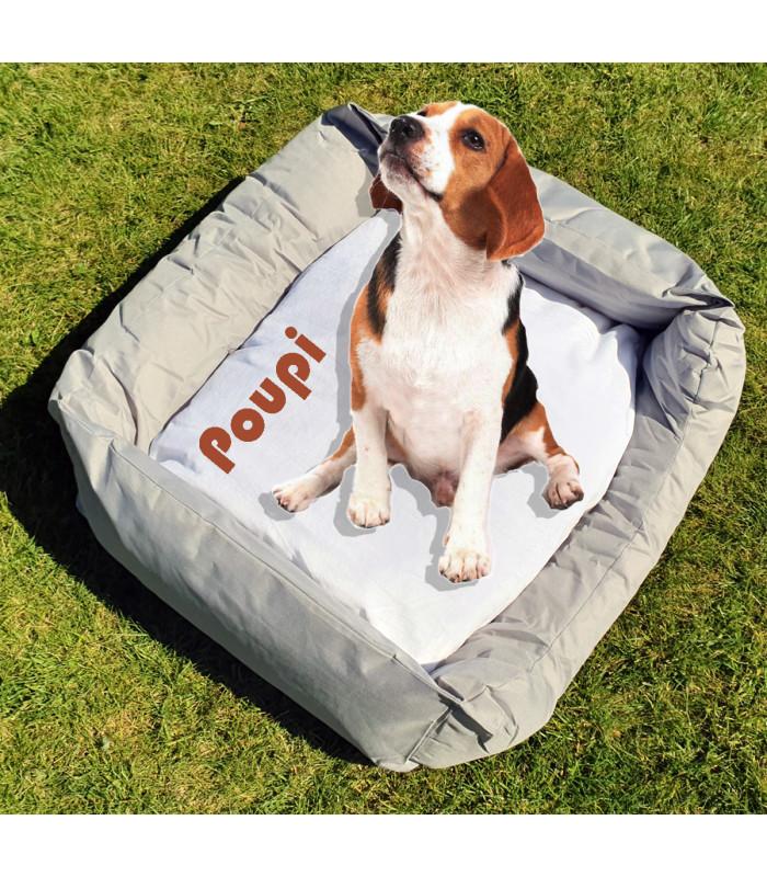panier lit pour chien