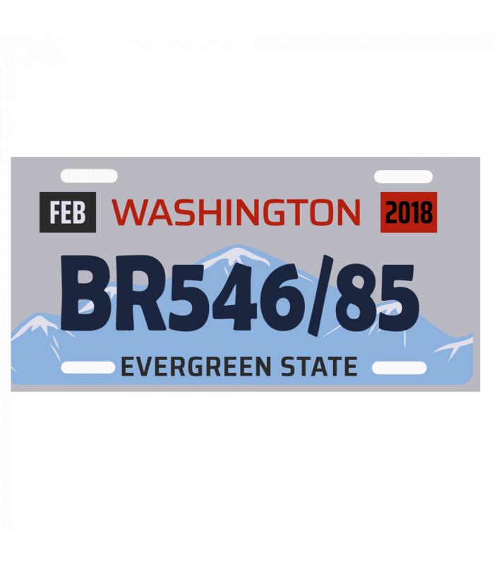 Plaque immatriculation USA Washington